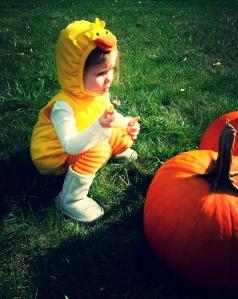 ab pumpkin