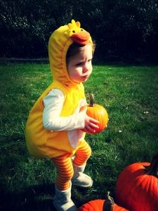 ab pumpkins3