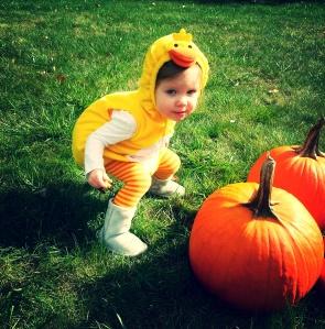 ab pumpkins4